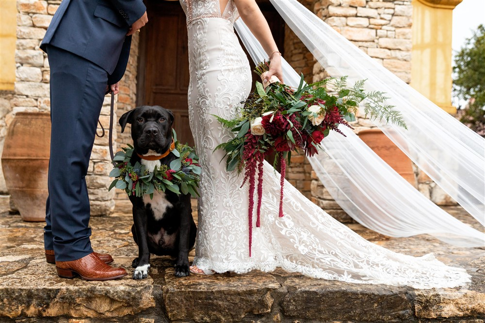 Dogs in Weddings Naomi + Kole