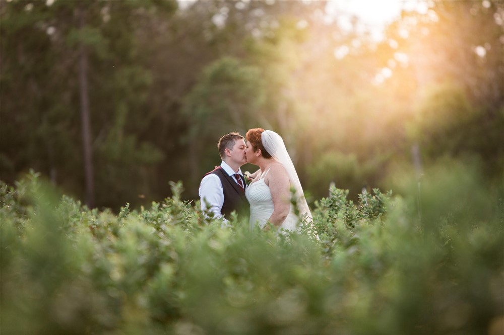 Ever After Farms Wedding, Complete Photography